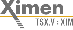 Ximen Logo